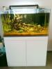 3 ftx1.8ftx2ft(H)  white cabinet tank june 2011