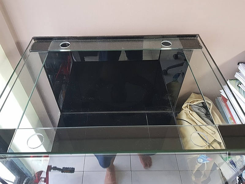 2ft tank for sale