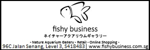 Fishy Business Banner