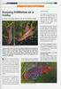 Aqualog news 63A