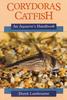 D Lambourne Corydoras catfish