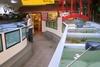 Pier Aquatics