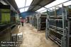 Gan's Fish Farm