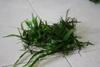 Java Ferns  - Loose